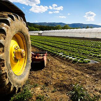 Farming/ Agriculture