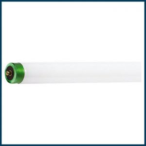 Fluorescent T8 Single Pin Lamps