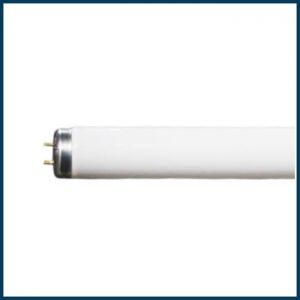 T12 Bi-pin Fluorescent Lamps