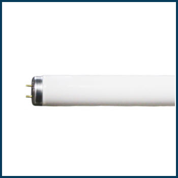 T12 Bi-pin Fluorescent Lamps