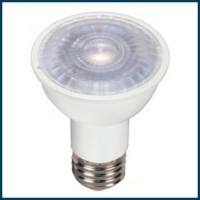 LED PAR16