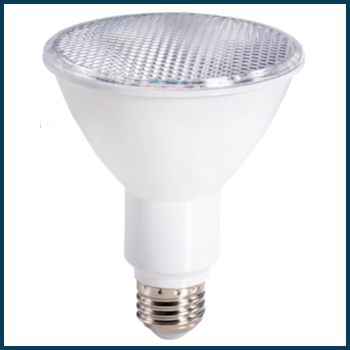 Topaz LED PAR30 Long Neck