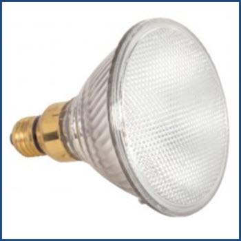 Satco S2246 PAR38 Lamp Thumbnail