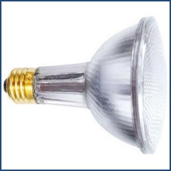 Ushio 1003843 60PAR30LN/FL30/120V Lamp Thumbnail